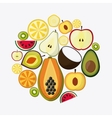 Fruit icon design vector image
