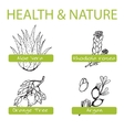 Handdrawn Set - Health and Nature Collection of vector image