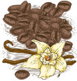 vanilla flower with two sticks and coffee beans vector image