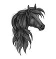 Sketch of black purebred horse head vector image vector image