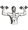 Woman with dumbbells - fitness vector image