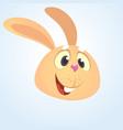 cartoon cute rabbit vector image