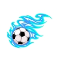 Championship soccer ball or football vector image