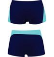 men swimsuit vector image
