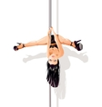 Pole dancer upside down vector image