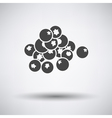 Blueberry icon on gray background vector image