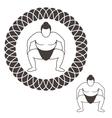 Sumo Wrestling vector image