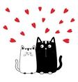 Cute cartoon black white cat boy and girl Kitty vector image