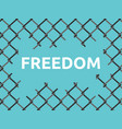 torn wire mesh freedom vector image