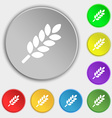 Wheat Ears Icon sign Symbol on eight flat buttons vector image