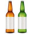 beer bottle blank package design vector image