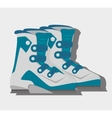 Winter sport and wear accesories vector image