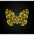 butterfly7 vector image vector image