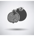 Pomegranate icon on gray background vector image