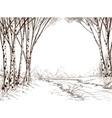 Birch tree forest graphic background vector image