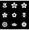 white flowers icon set vector image