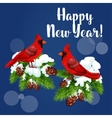 Red cardinal birds on pine tree vector image