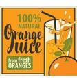glass of fresh orange juice vector image vector image