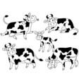 Cow Set vector image