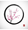 Oriental cherry branch in blossom vector image