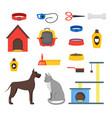 cartoon domestic pets care set vector image