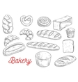 Sketched wheat bread and sweet buns vector image