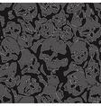 jeans skulls vector image