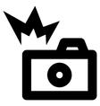 Camera Flash Stroke Icon vector image