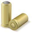 Pair bullets Vector Image
