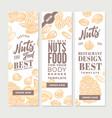 vintage nuts food vertical banners vector image
