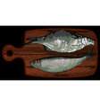 fish on a cutting board vector image