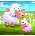 two sheeps cartoon on farm background vector image