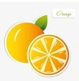 orange sticker vector image vector image
