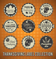 Happy Thanksgiving Labels and Icons vector image