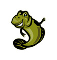 Mud skipper or goby fish cartoon vector image