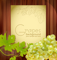 fresh grapes vector image