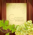 fresh grapes vector image