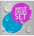 Pure Water Drops Set vector image