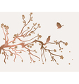 plum flowers blossom vector image vector image