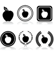 Apple emblems vector image