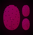 Types of fingerprint patterns vector image