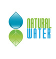 Natural water icon vector image