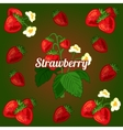 Card with strawberries on a green background vector image