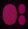 Types of fingerprint patterns vector image