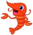 Cute shrimp cartoon presenting vector image