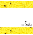 bunch of bananas vector image vector image