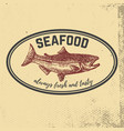 fresh seafood hand drawn salmon on grunge vector image