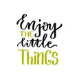 enjoy the little things lettering calligraphic vector image