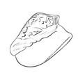 sketch of sea shell vector image