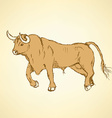 Sketch angry bull in vintage style vector image